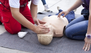 Young Farmers First Aid Training